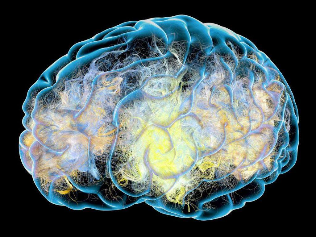 neurodegeneration-coronavirus-bellingham-naturopath-northwestern-clinic-of-naturopathic-medicine
